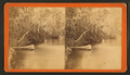 Oklawaha River, Florida, from Robert N. Dennis collection of stereoscopic views.png