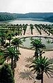 Orangerie du chateau de Versailles 1993 - panoramio.jpg
