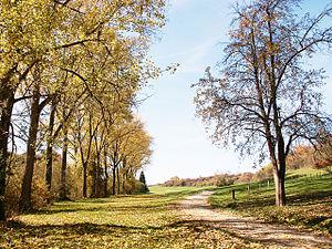 Ostdorf - Typical country side found around Ostdorf, Germany.