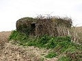Overgrown WWII pillbox - geograph.org.uk - 770022.jpg