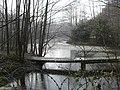 Owlbeech wood pond - geograph.org.uk - 637432.jpg