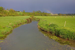 Trévières - Aure River