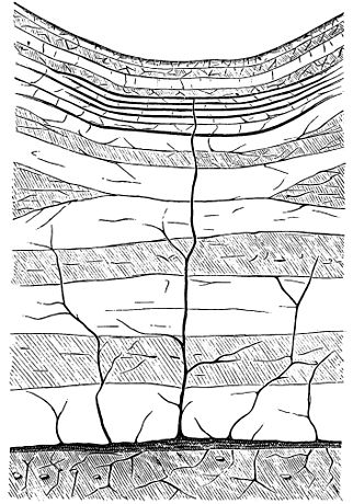 PSM V19 D557 Probable formation of asphalt before erosion.jpg