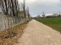 Parc Croissant Vert Neuilly Marne 18.jpg
