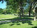 Parc Jeanne-Mance 11.JPG