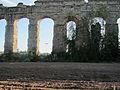 Parco degli Acquedotti 2013-2.JPG
