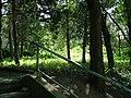 Park Area at Strahilovo School - panoramio.jpg