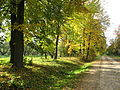 Park LoszycaMienskBielarus.jpg