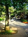ParqueLleras4.jpg