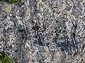 Partially devitrified rhyolitic obsidian (Roaring Mountain Member, Plateau Rhyolite, Upper Pleistocene, ~59 ka; Obsidian Cliff, Yellowstone, Wyoming, USA) 13 (46084070044).jpg