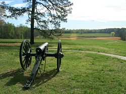 Petersburg, Confederate Gun.jpg