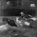 Philipp Peter Roos - Pigeons - KMSst117 - Statens Museum for Kunst.jpg