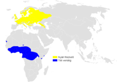 Phylloscopus sibilatrix distribution map.png