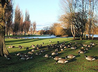 Pickering Park, Kingston upon Hull