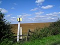 Pipeline Marker near Easington - geograph.org.uk - 2059306.jpg