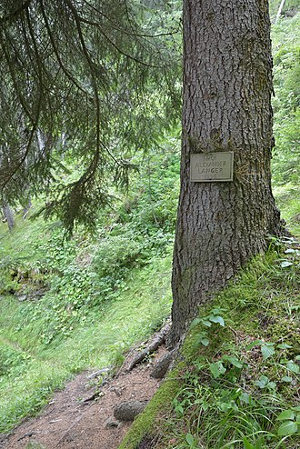 "Alexander Langer - The ""Alexander Langer"" trail leading to the Waterfall (1565 mslm) Pisciadoi de Pedroc in Santa Cristina, Gröden - South Tyrol."