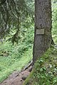 Pisciadoi de Pedroc troi Alexander Langer Gherdëina.jpg