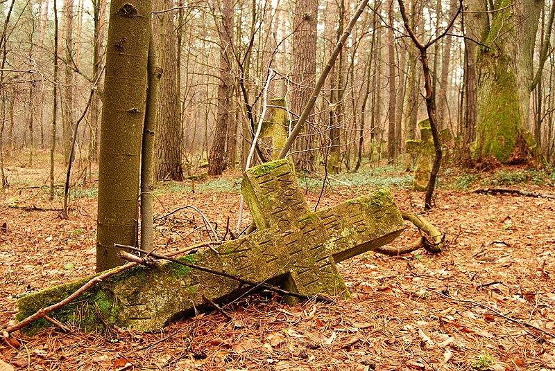 Wyróżnienie: Fragment rozległego dawnego cmentarza greckokatolickiego we wsi Podemszczyzna w gminie Horyniec-Zdrój.