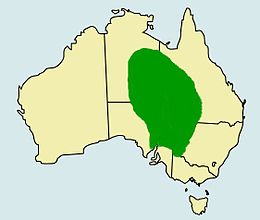 Pogona vitticeps distribution.jpg