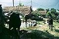 Pokhara Valley, Nepal (27637341133).jpg