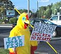 Political protester.jpg