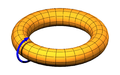 Poloidal rotation of a torus.png