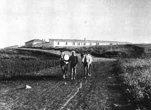 Poria Illit - Poria farm, 1912