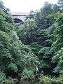 Poulaphouca Falls and Bridge - geograph.org.uk - 874350.jpg
