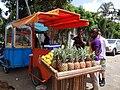 Preparing pineapple juice in Abidjan in Côte d'Ivoire (1).jpg