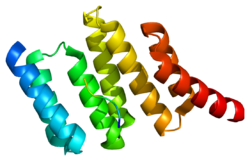 Protein STIP1 PDB 1elr.png