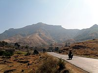 Purandhar fort from Narayanpur Road.JPG
