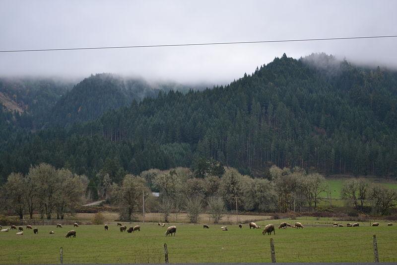 File:Putnam Valley (near Drain, Oregon).jpg