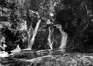 Dinner Falls - Image: Queensland State Archives 1315 Rays Falls head of Barron River at Mount Hypipamee near Herberton c 1935