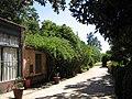 Quinta de Capurro. Santa Lucía. Canelones..jpg