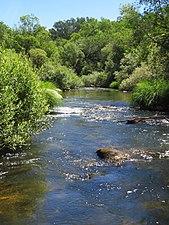 Río Lozoya 1.jpg