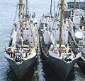 RIAN archive 448863 Whaling ships.jpg