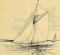 Races for the America's cup (1893) (14587308097).jpg