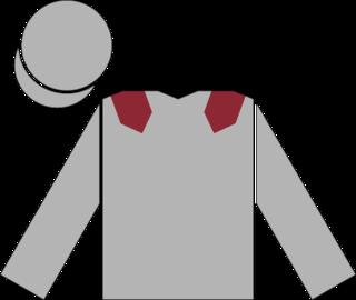 Toronado (racehorse) Irish-bred Thoroughbred racehorse