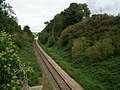 Railway cutting - geograph.org.uk - 243292.jpg