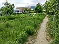 Ramsey County Library - Roseville - garden and trail.jpg
