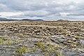 Rangipo Desert 29.jpg