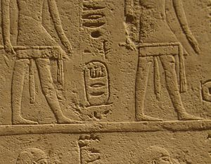 Genealogy of Ankhefensekhmet - Cartouche of the otherwise unknown Hyksos king Sharek (mentioned in pos. 3/6)