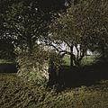 Restant van schuurtje, staat links van de boerderij - Kallenkote - 20397903 - RCE.jpg