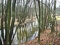 Rheinsberger-Rhin-vor-Zechow-24-01-2008-043.jpg