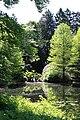 Rhododendronpark Bremen 20090513 088.JPG