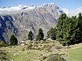 Riederalp - panoramio.jpg