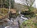 River Barrow - geograph.org.uk - 1227163.jpg