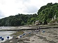 River Dart at Dittisham - geograph.org.uk - 1479756.jpg