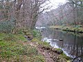 River Dart at Hembury Woods - geograph.org.uk - 128202.jpg