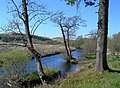 River Doon - geograph.org.uk - 422315.jpg